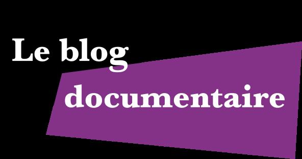 LOGO BLOG DOCUMENTAIRE