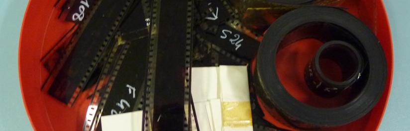 Archives Slon/Iskra : «Du bon usage des épluchures»