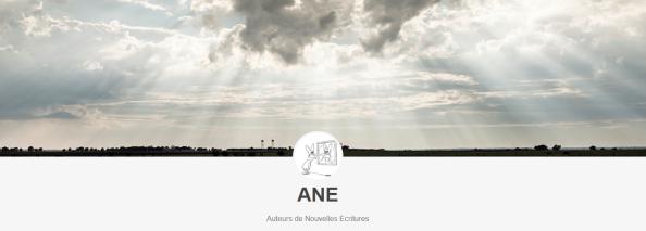 Une enquête sur les auteurs de « nouvelles écritures »
